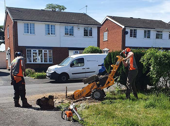 Our team - Urban Forestry leeds, local tree surgeon