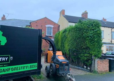Cheap hedge trimming services in Leeds