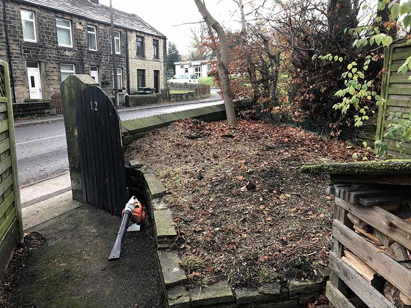 stump grinding and removal in Leeds
